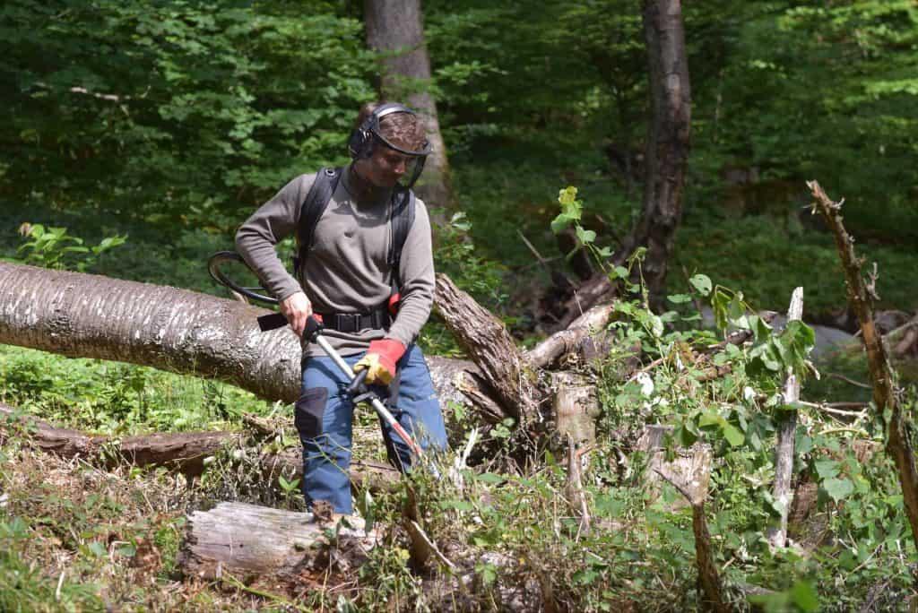 Stiftung Lebensraum Linthebene: Zivildienst im Naturschutz 15