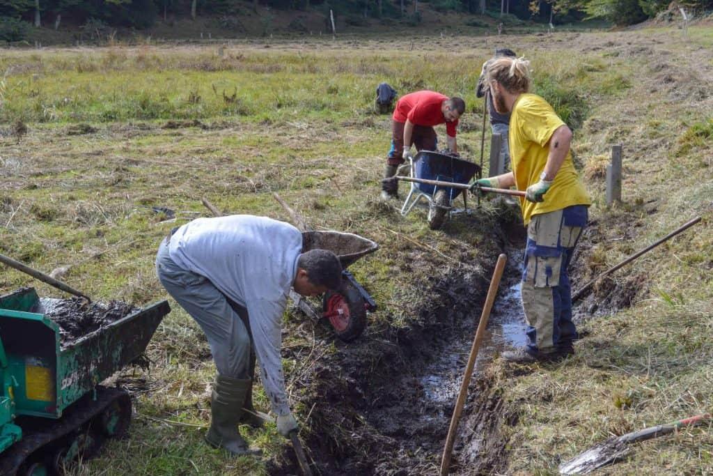 Stiftung Lebensraum Linthebene: Zivildienst im Naturschutz 16