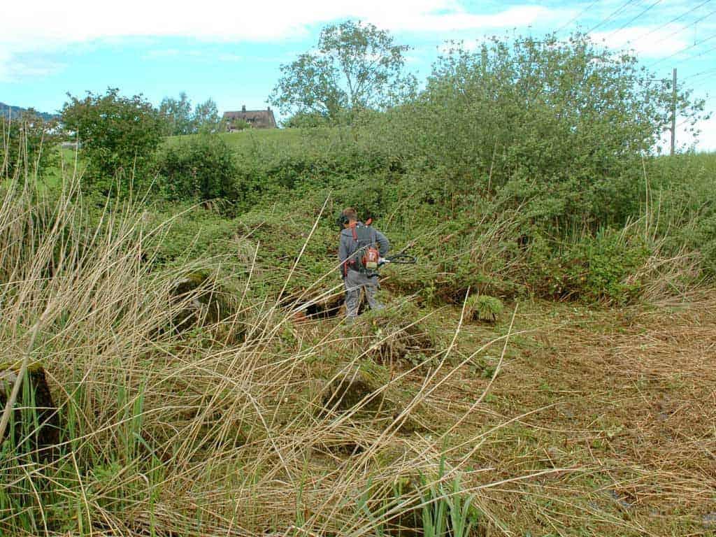 Ökologische Aufwertung Panzersperren 11