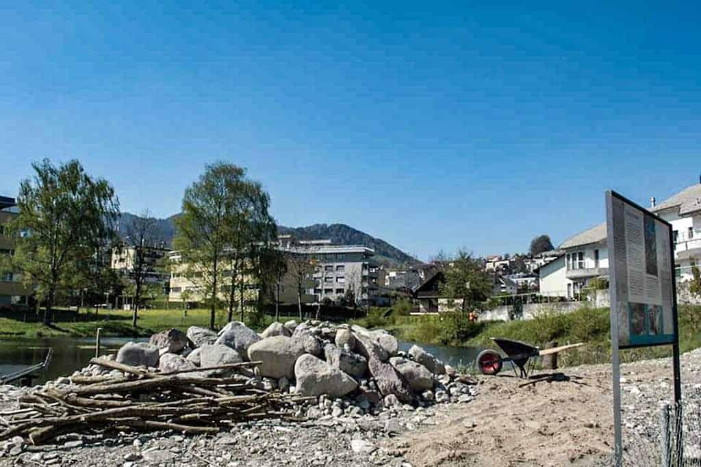 Ökologische Aufwertung Wygartenweiher Wollerau 4