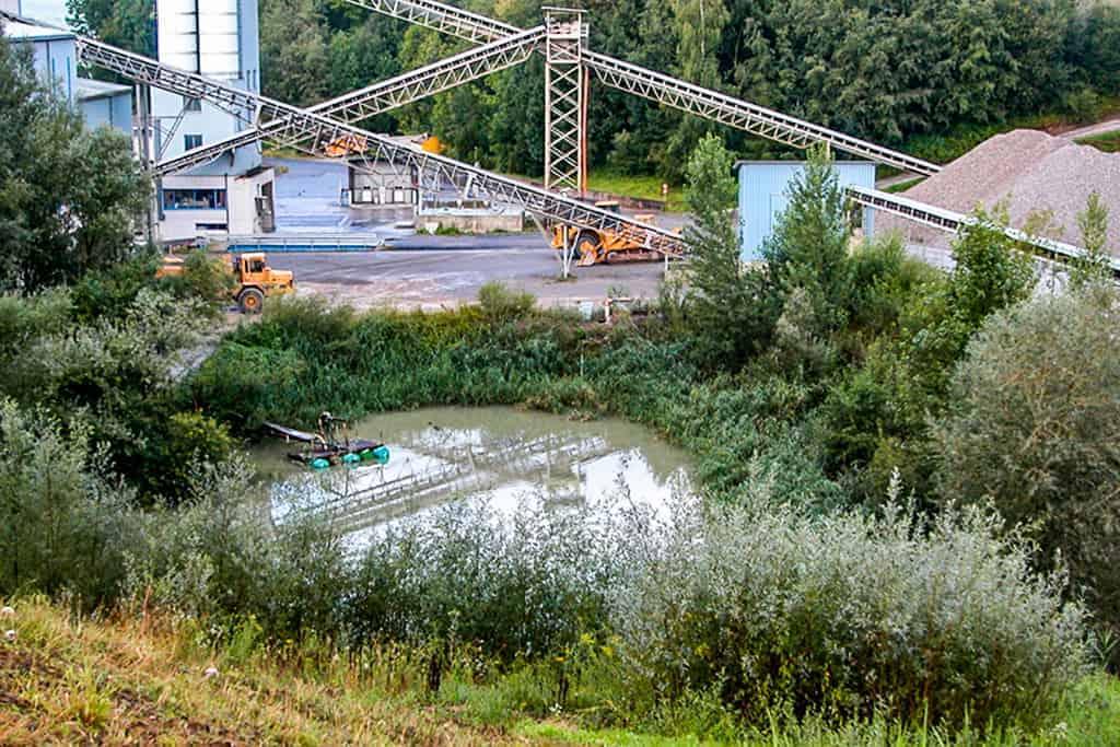 Ökologische Begleitung Abbaustandort Girendorf 7
