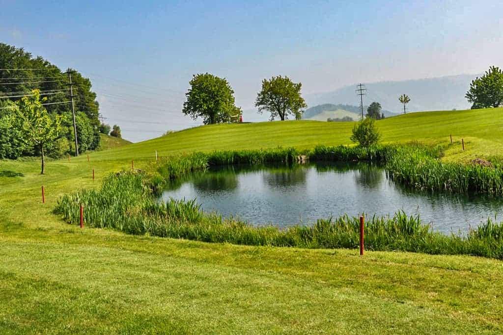 Ökologische Begleitung Golfplatz Küssnacht 5