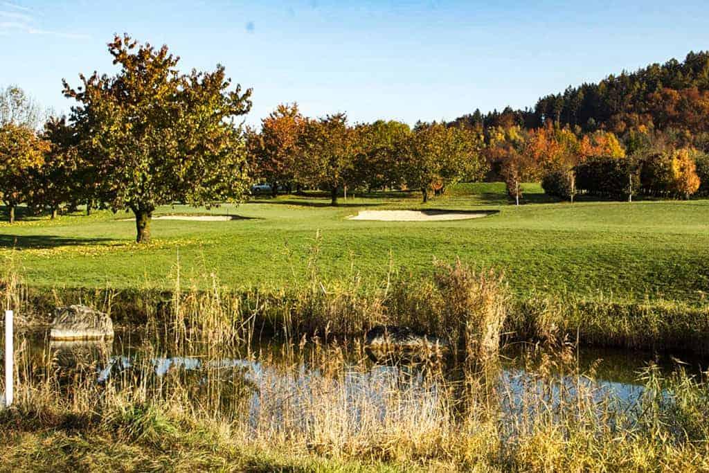 Ökologische Begleitung Golfpark Zürichsee 5