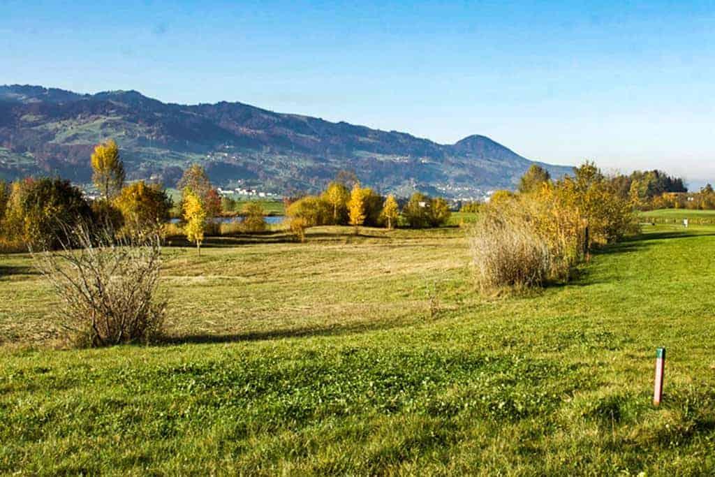 Ökologische Begleitung Golfpark Zürichsee 7