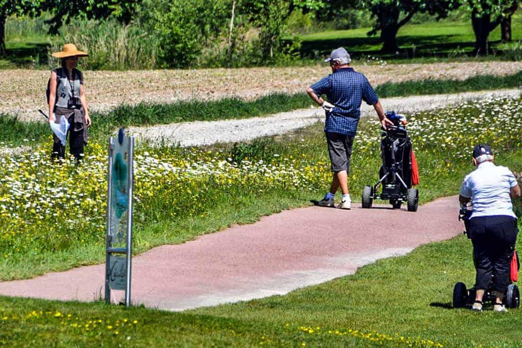 Ökologische Begleitung Golfpark Zürichsee 12