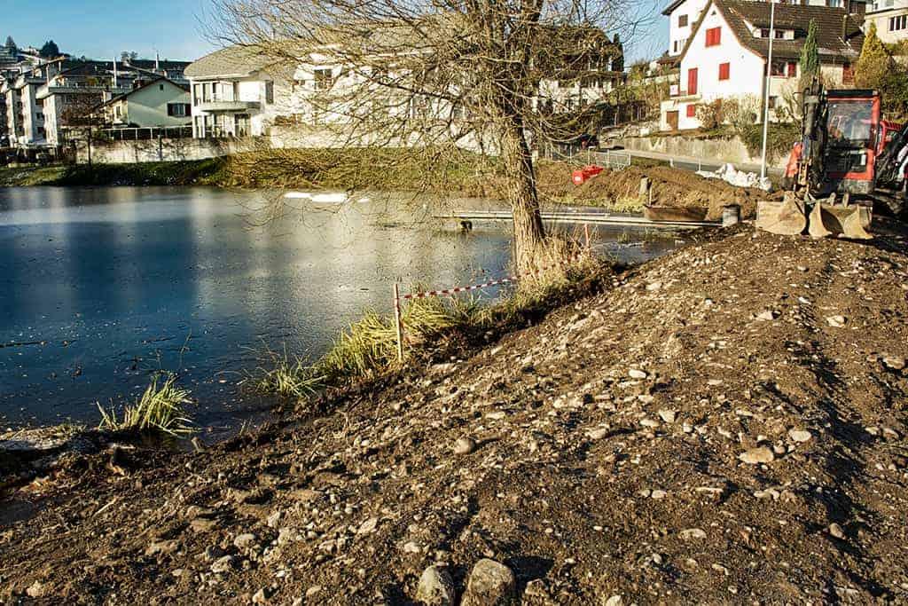 Ökologische Aufwertung Wygartenweiher Wollerau 5