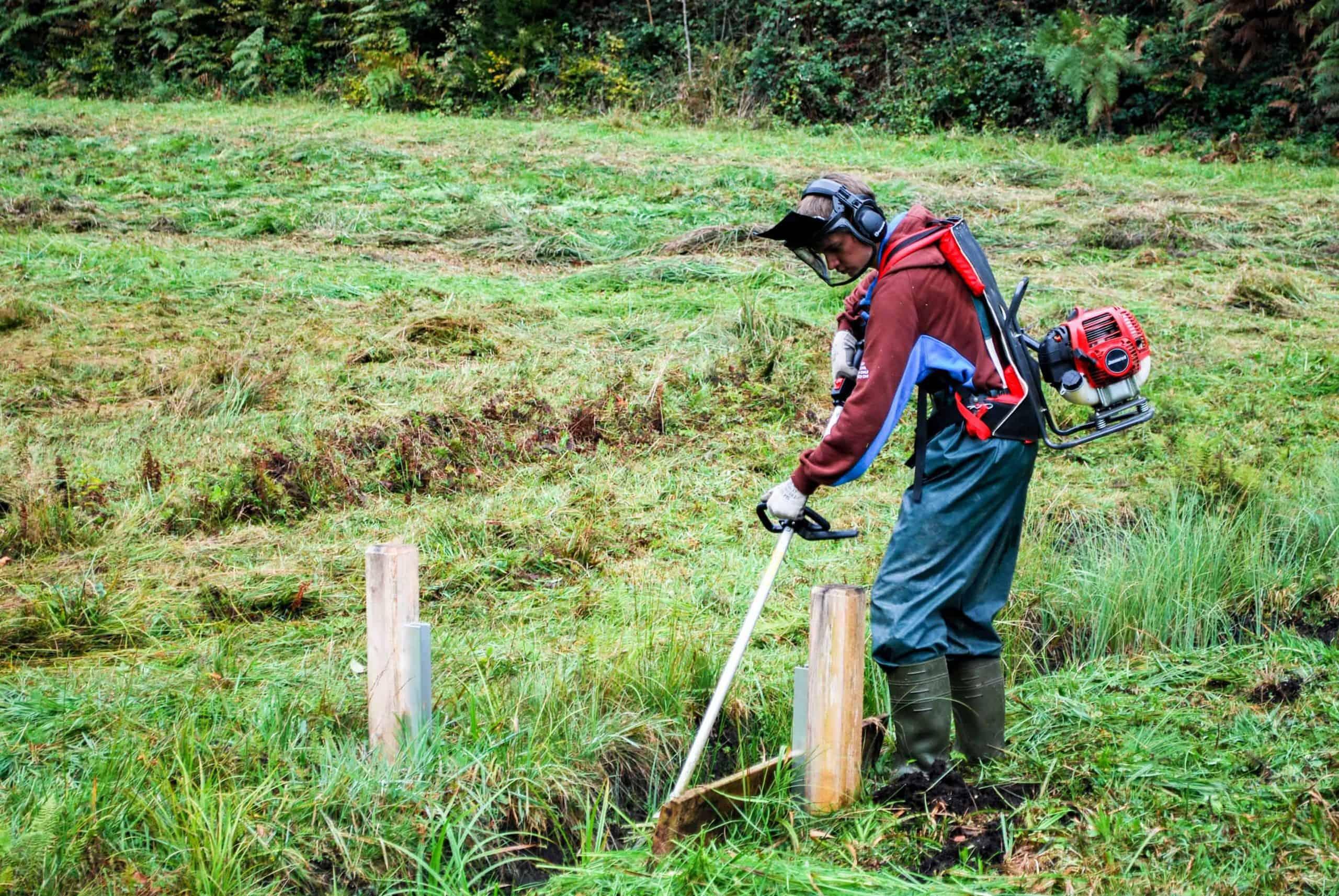 Stiftung Lebensraum Linthebene: Zivildienst im Naturschutz 5
