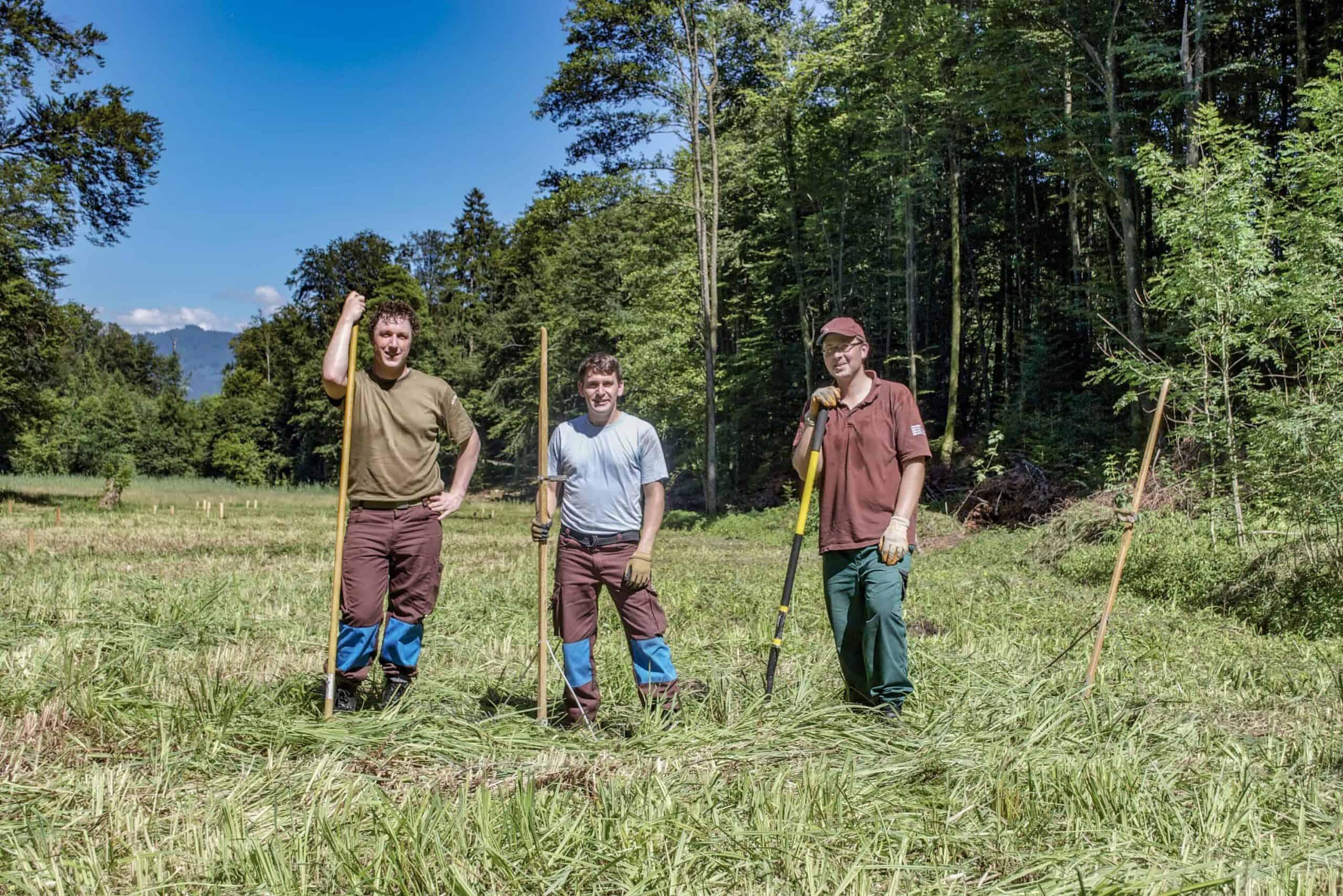 Stiftung Lebensraum Linthebene: Zivildienst im Naturschutz 4