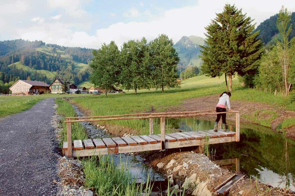 Revitalisierung Lattbach-Euthal 7