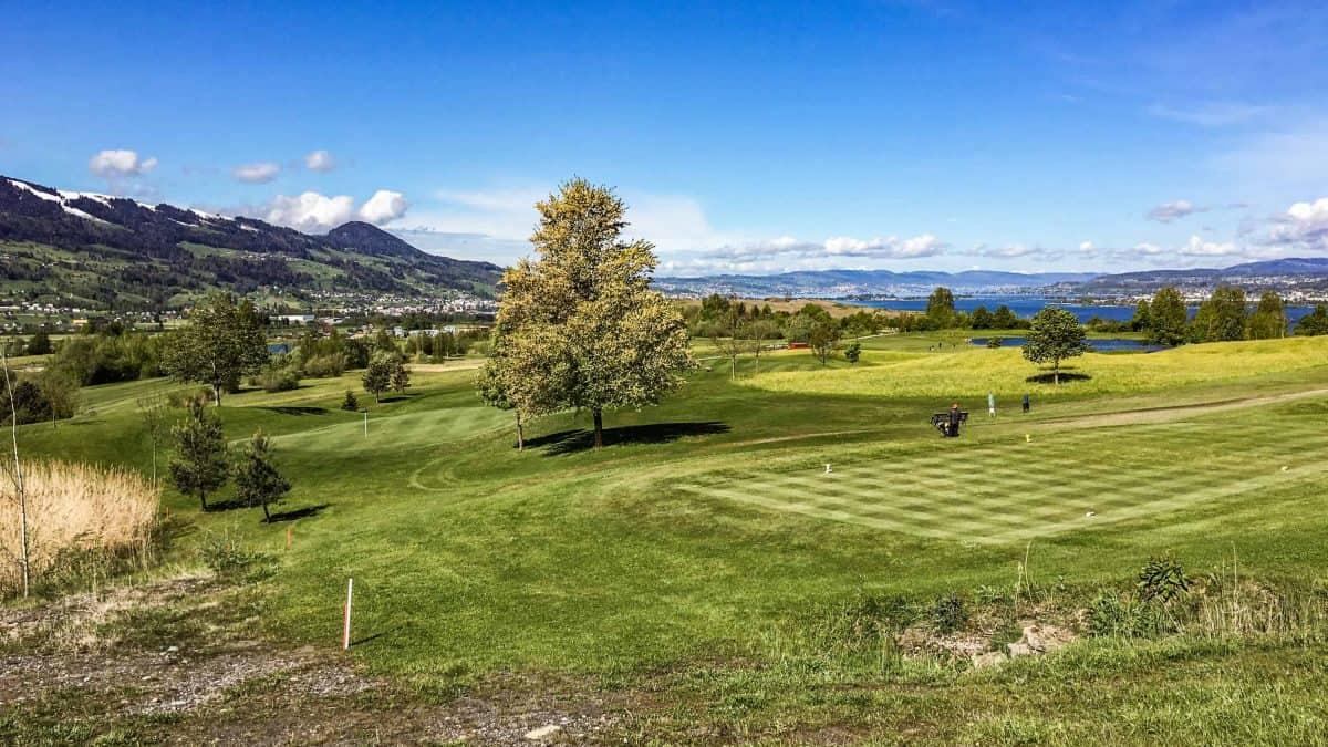 Ökologische Begleitung Golfpark Zürichsee 2