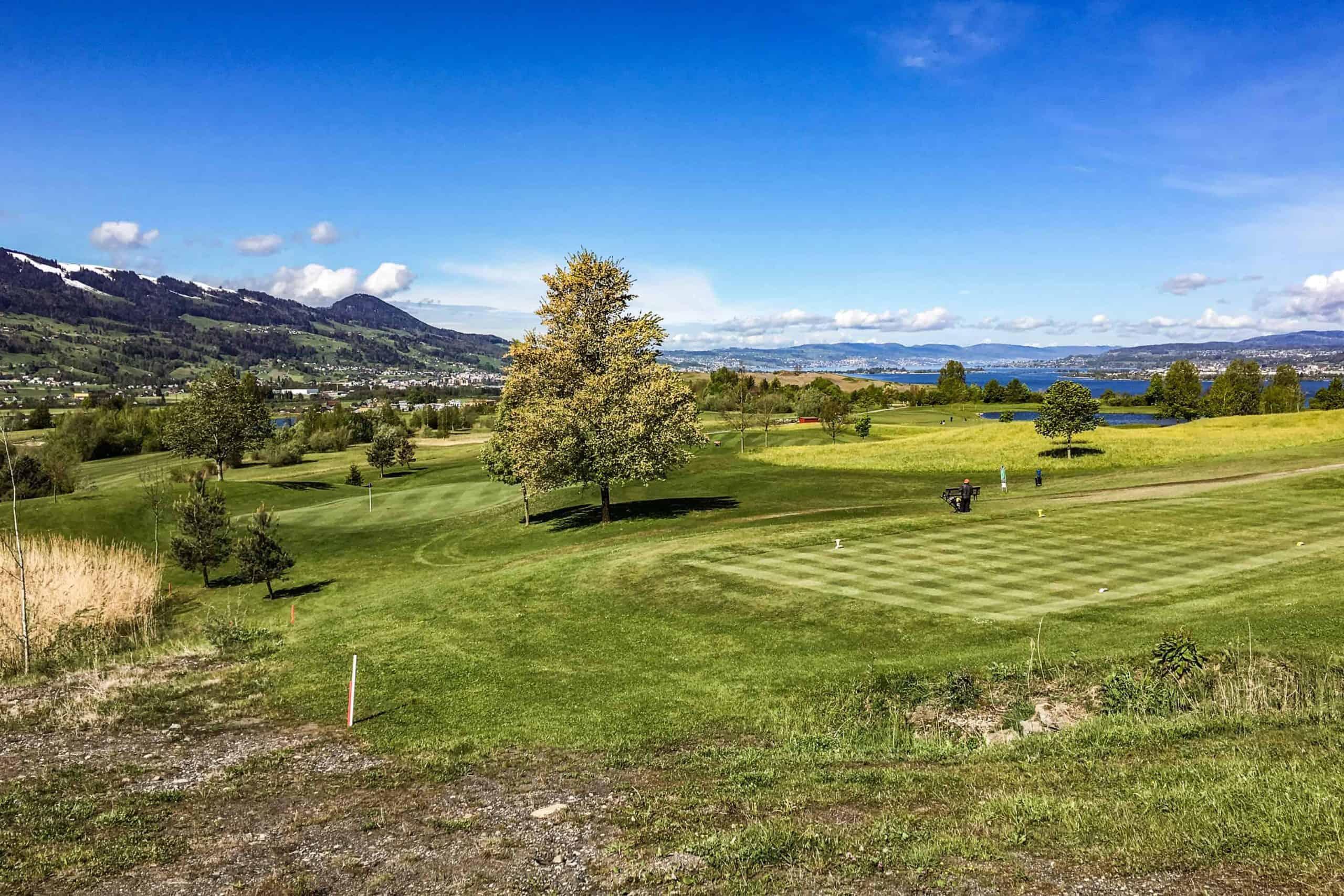 Ökologische Begleitung Golfpark Zürichsee 8