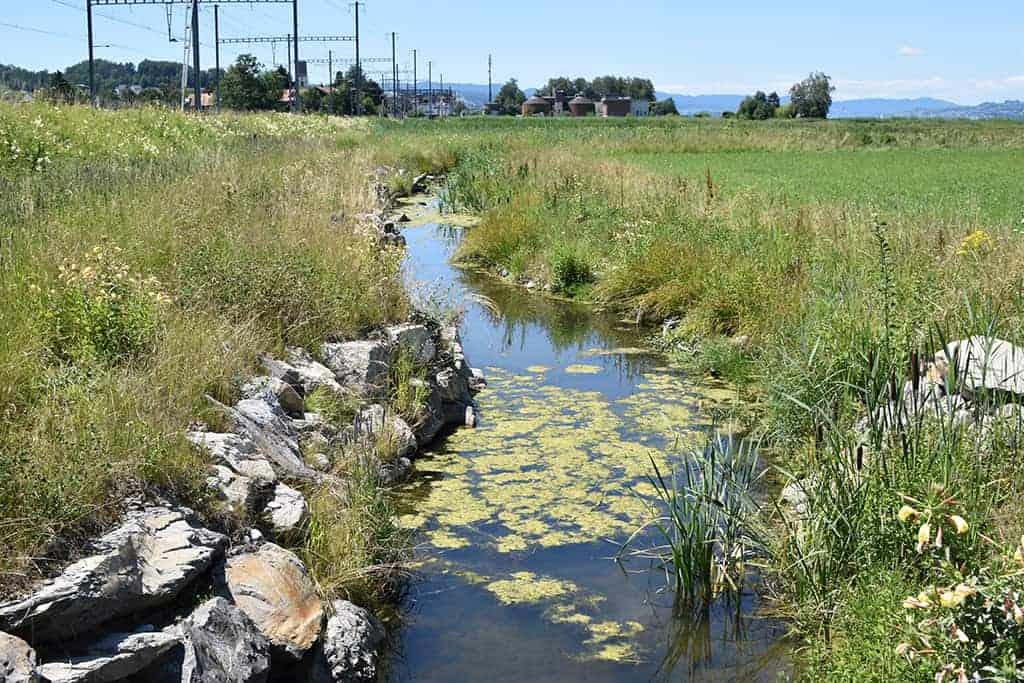 Revitalisierungen & Hochwasserschutz 1