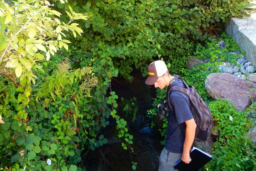 Hochwasserschutzprojekt Krebsbach Wollerau 5