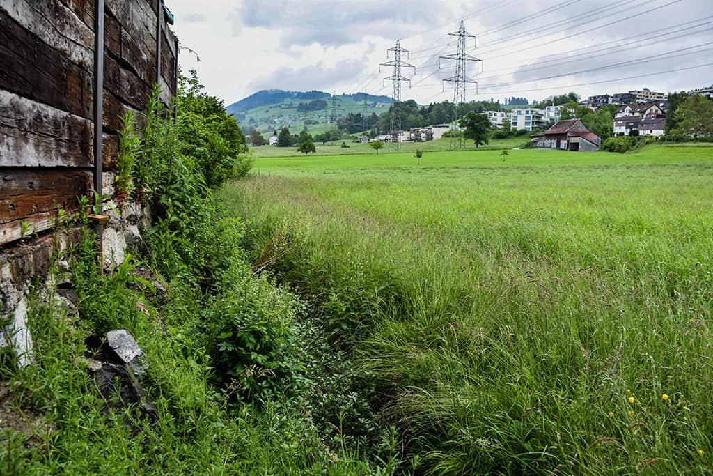 Hochwasserschutzprojekt Krebsbach Wollerau 7