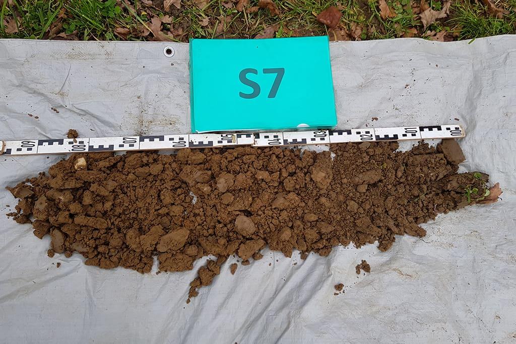Bodenprofil