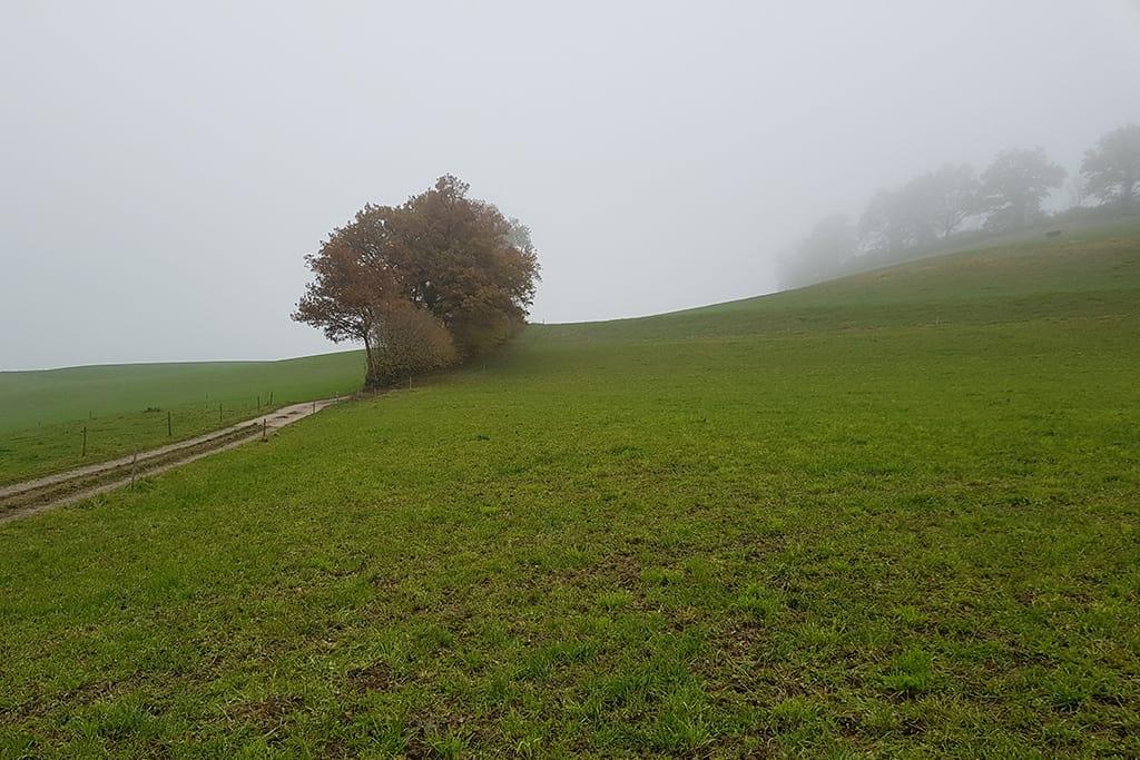 Bodenschutzkonzept für Kabelleitung Luthern-Grünboden 3