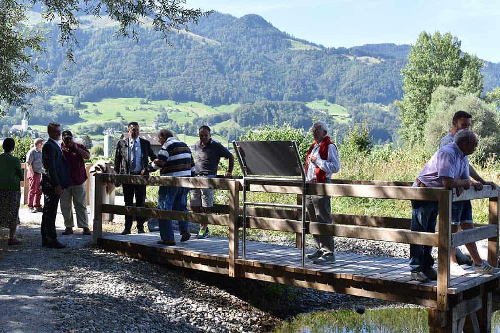 Ökologische Aufwertung Amphibienlaichgebiet Reumeren 12