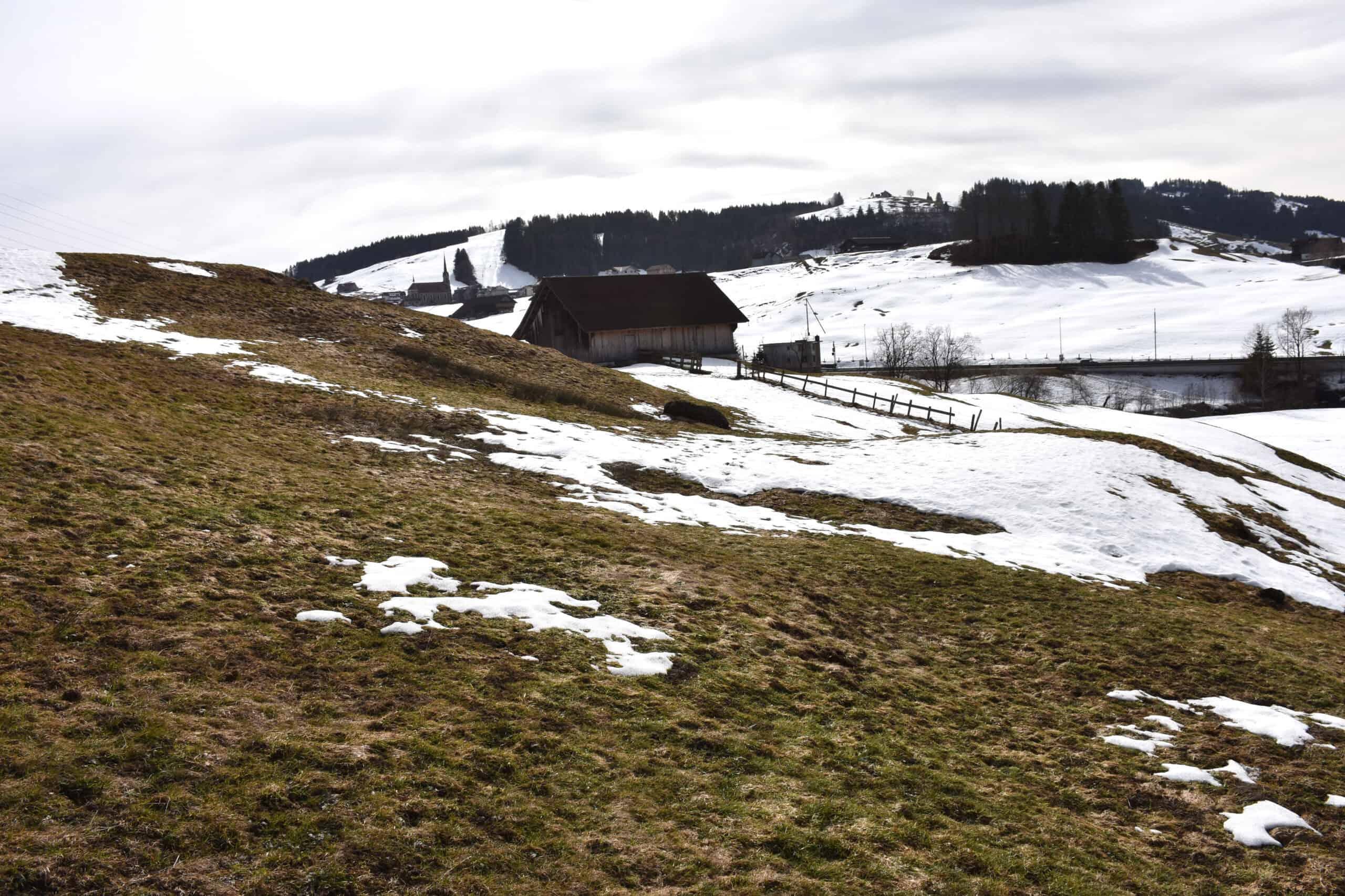 Deponie Stähliboden: Ökologie und Bodenschutz 6