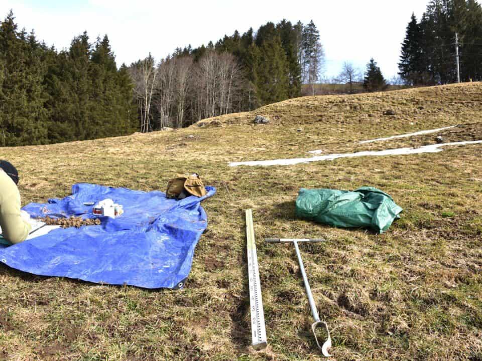 Deponie Stähliboden: Ökologie und Bodenschutz 8