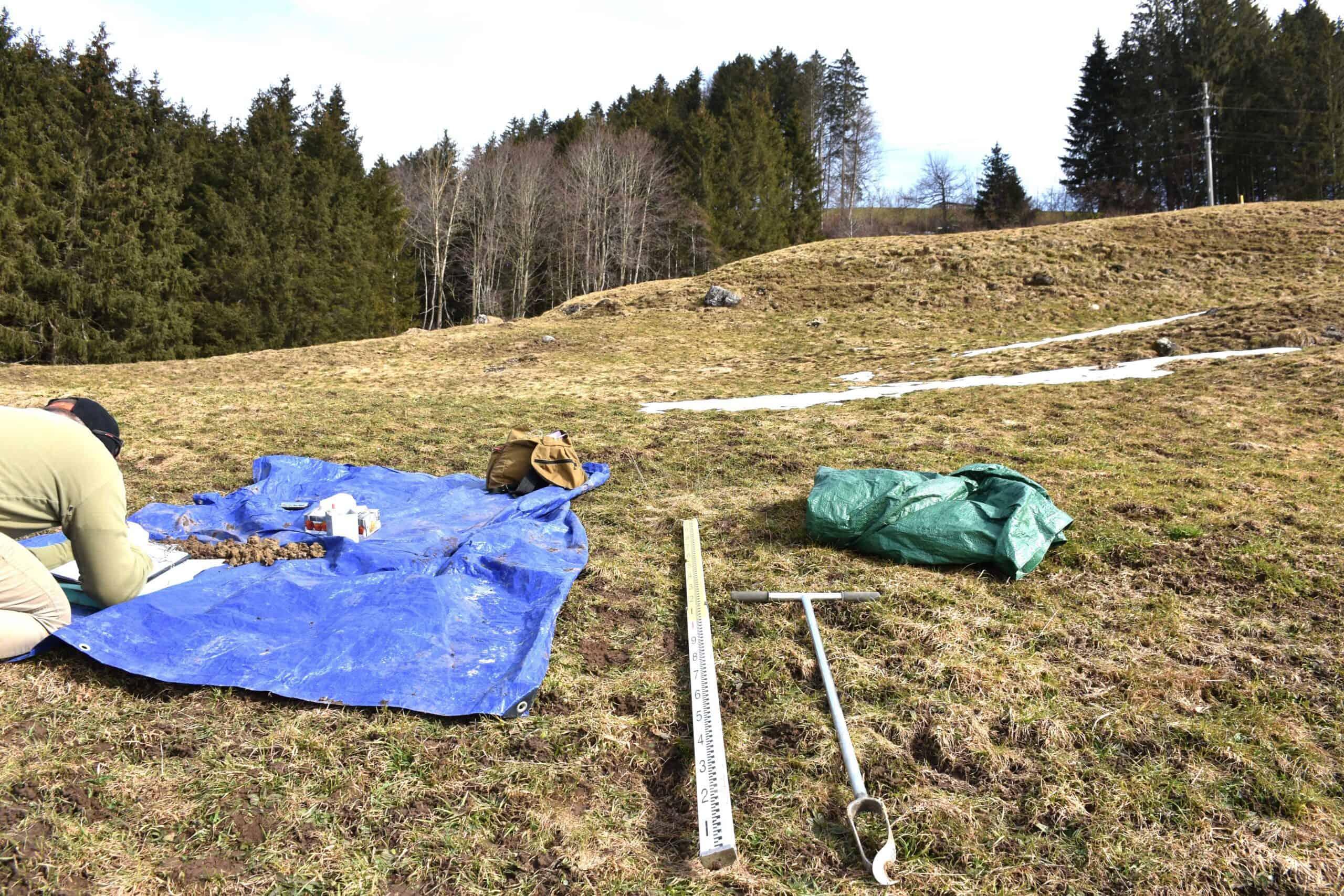 Deponie Stähliboden: Ökologie und Bodenschutz 5