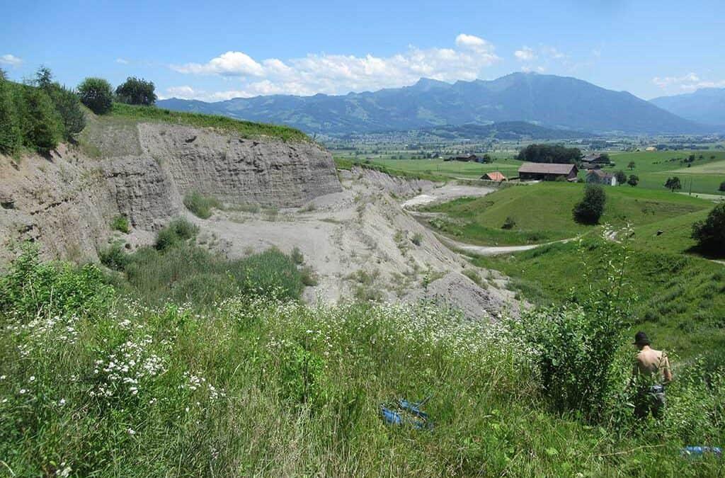Neophytenbekämpfung Kiesgrube Girendorf, Tuggen 2