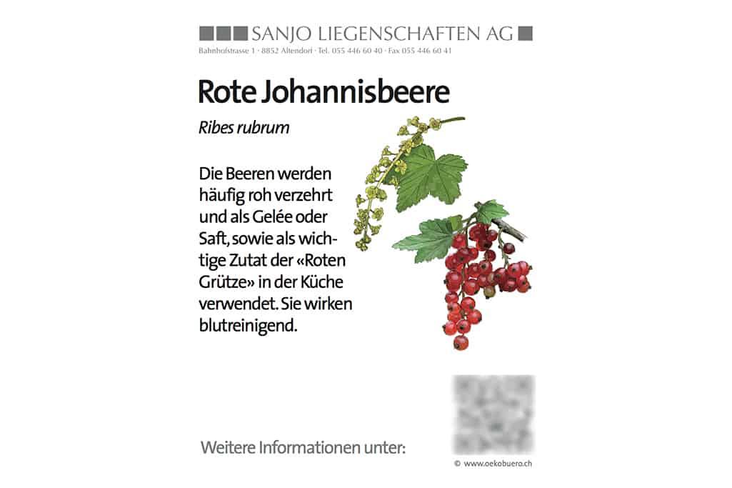 Infotafeln Natur & Naturschutz 37