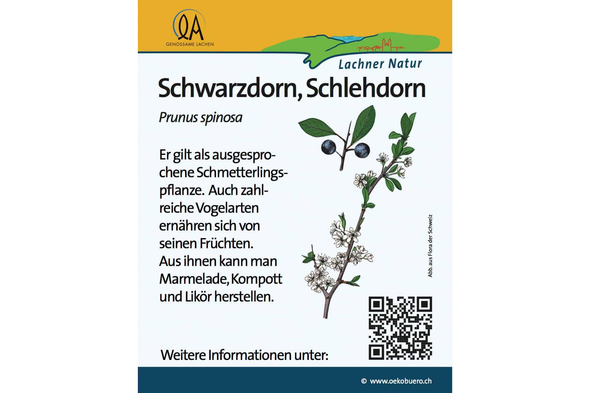Infotafeln Natur & Naturschutz 38